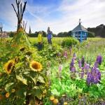 Bee garden_Copyright Mike Hughes