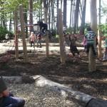 Woodland Play copy