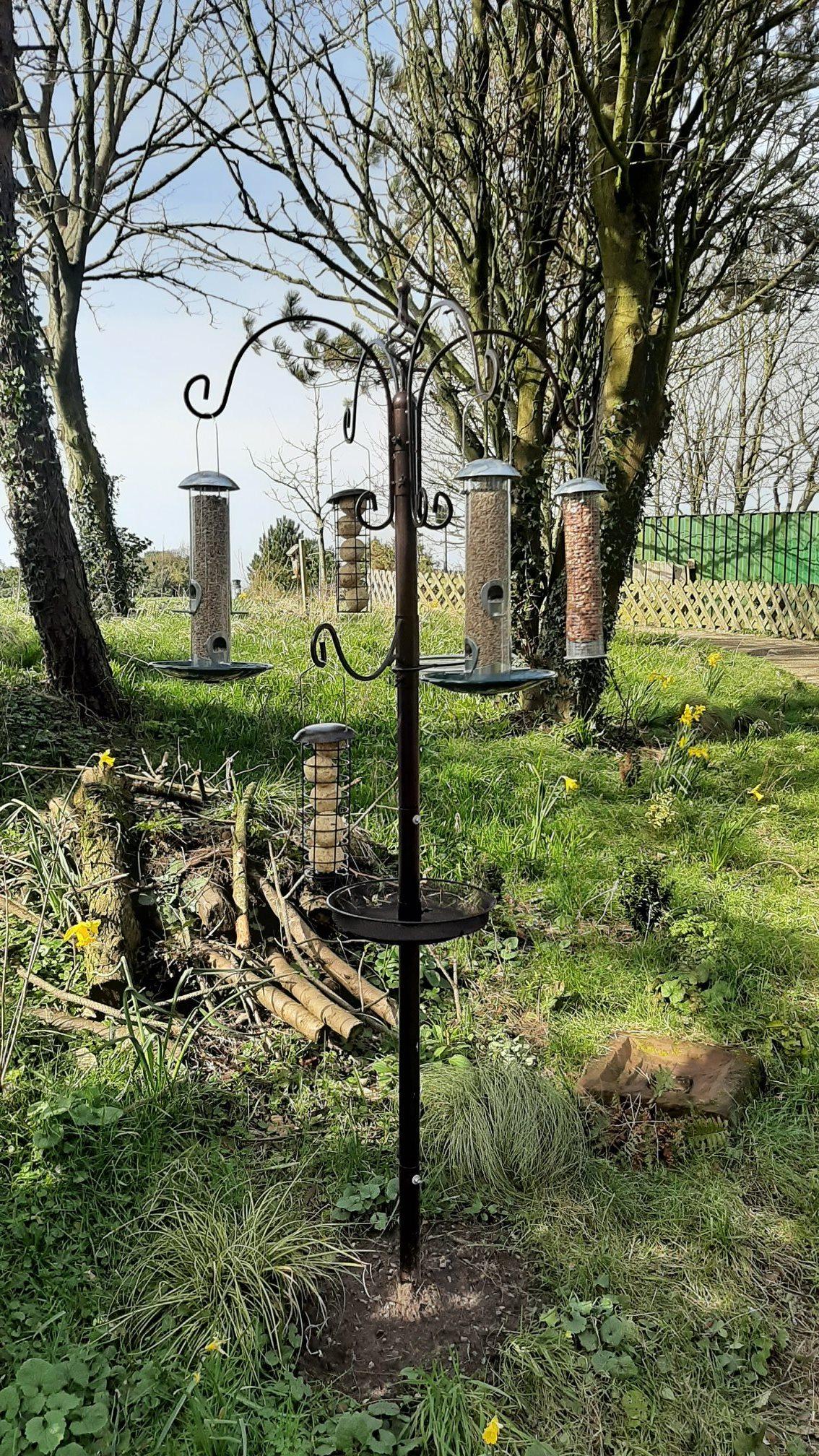 New Bird Feeding Station